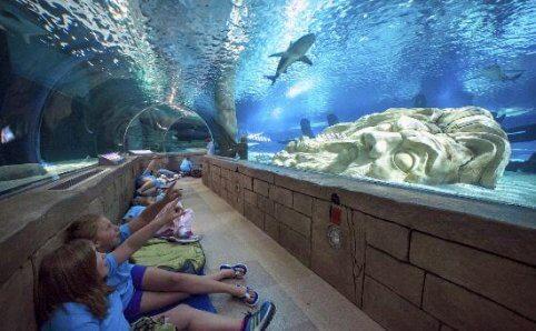 Sea Life Minnesota Mall of America