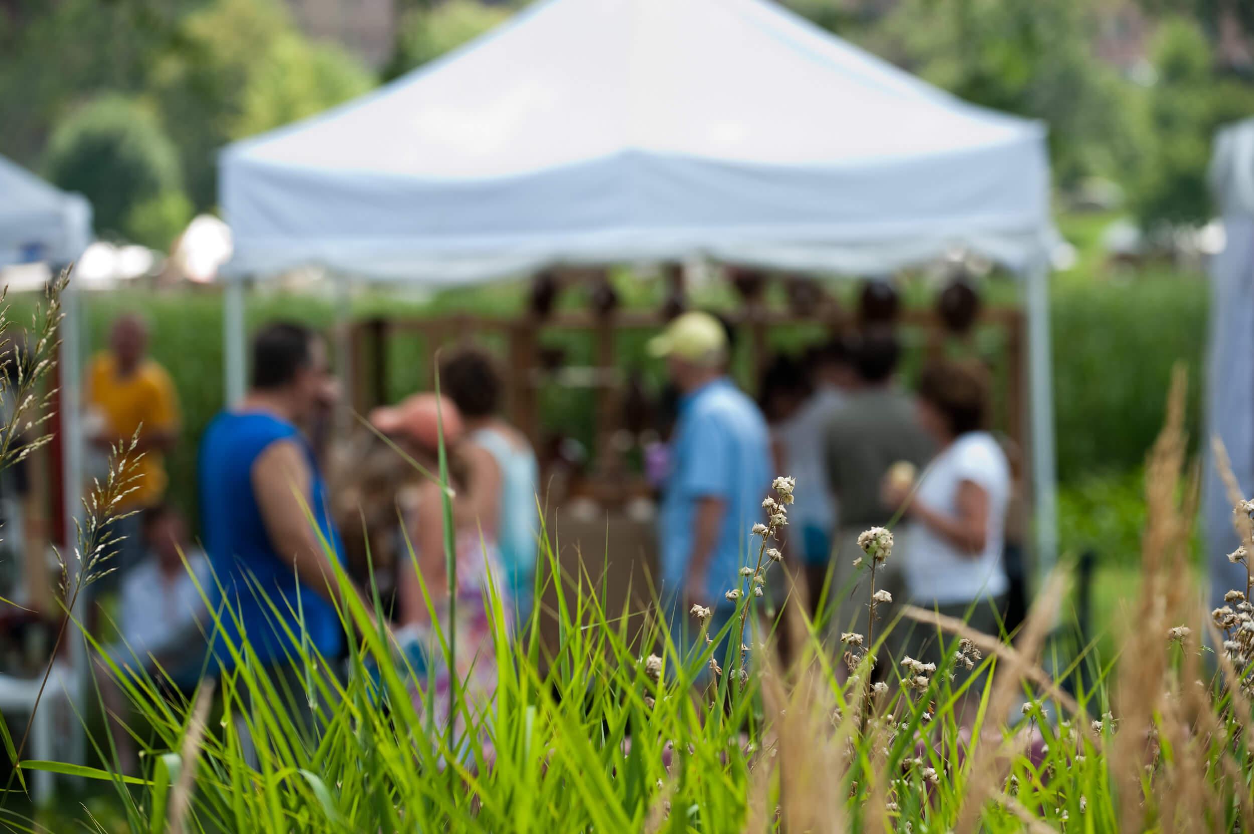 Loring Park Art Festival Roseville Event